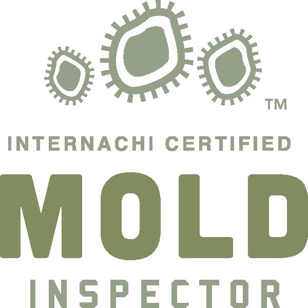 Mandeville mold inspection near me