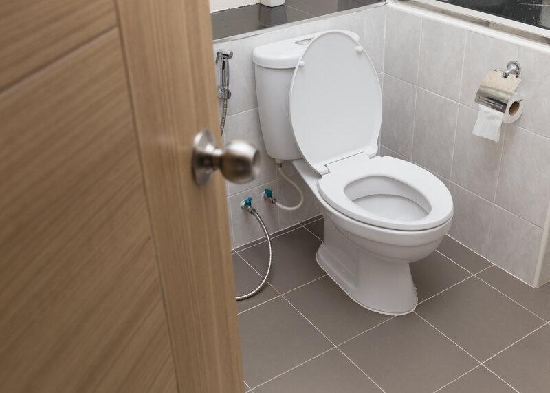 Toilet Inspection Mandeville